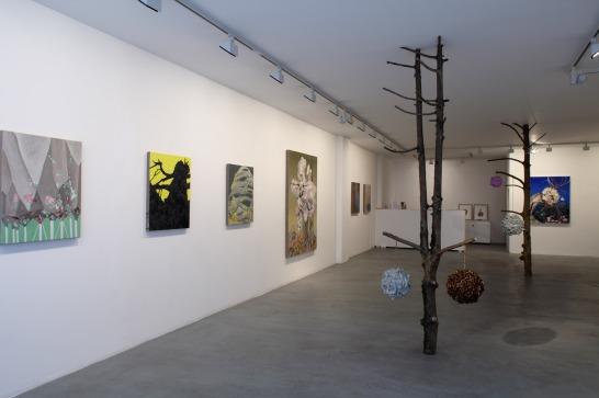 Installation at Maddox Arts