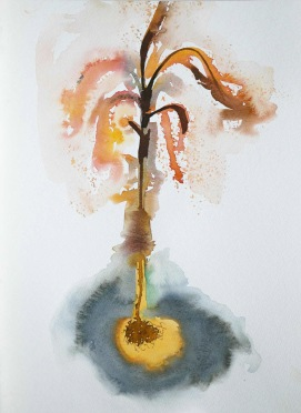 Yellow Plant. 2008. Waercolour on paper. 55 x 44 cm. £380